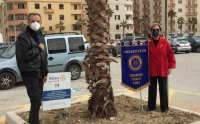 """Comunicato – """"Progetto piantumazione e donazione alberi alla città – 2021"""""""